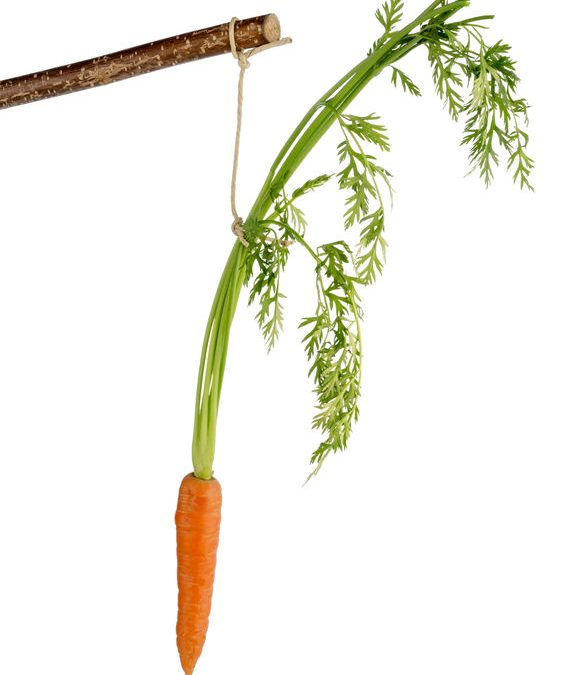 How Big Are Your Carrots?